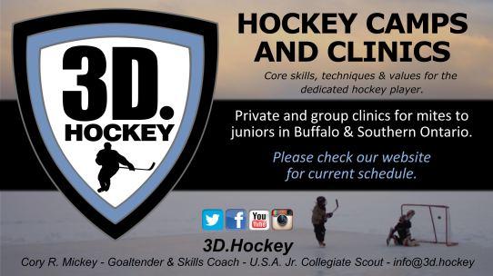 3D.Hockey North Buffalo Rink ad