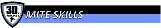 Header- Mite Skills